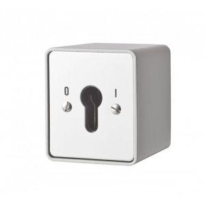 Maasland Security sleutelschakelaar opbouw continu 1 zijde - Y11300005 - afbeelding 1