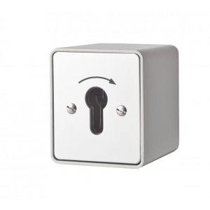 Maasland Security sleutelschakelaar opbouw puls 1 zijde - Y11300006 - afbeelding 1