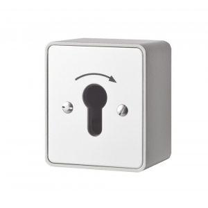 Maasland Security sleutelschakelaar opbouw puls 1 zijde - Y11300013 - afbeelding 1