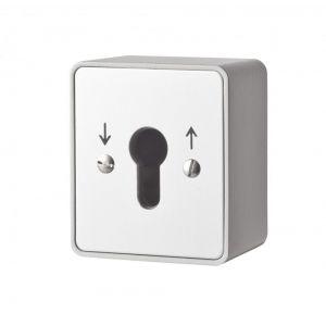 Maasland Security sleutelschakelaar opbouw puls 2 zijden - Y11300014 - afbeelding 1
