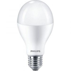 Philips LED lamp normaal Corepro LEDbulb 18.5 W-120 W E27 A67 827 extra warm wit - Y51270135 - afbeelding 1